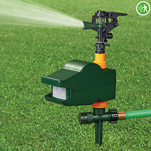 China Scarecrow Motion Activated Sprinkler HT1038 factory manufacturer supplier